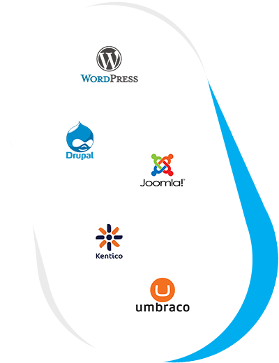 Web Developer 3